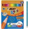 Boite metal 18 crayons de...